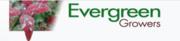 Evergreen Growers
