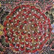 Authentic Aboriginal Fabric Patterns On Sale